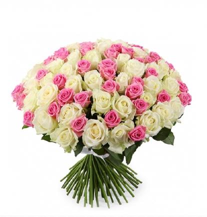 Balta- Rožinė MIX (Šimtukas)   129€/169€