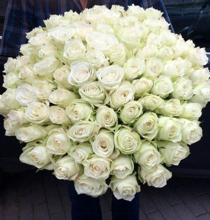 """Baltos Rožės """"Šimtukas""""  149€/179€"""