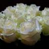 Baltos rožės 0