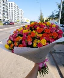 """Daugiažiedžių rožių  puokštė """"Miranda"""" (49vnt)"""