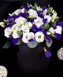 Gėlių dėžutė (Eustomos)