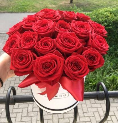 """Gėlių dėžutė """"Verona"""""""