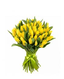 Geltonos tulpės (49vnt) Dar neprasidėjo sezonas :(