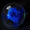 Mieganti rožė - mėlyna 1