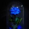 Mieganti rožė - mėlyna 0