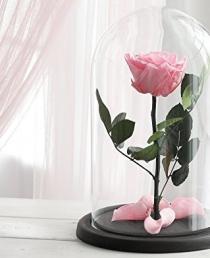 Mieganti Rožė (Ružava)
