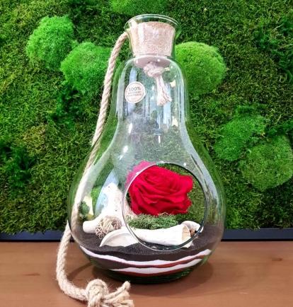 """Mieganti rožė stikle - """"Liepa"""""""