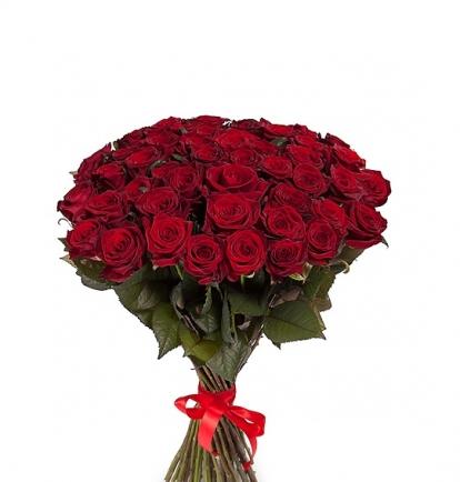 Raudonos rožės (49vnt)