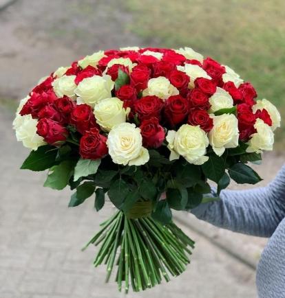 Raudonų ir baltų rožių duetas  (99vnt)