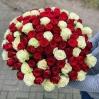 Raudonų ir baltų rožių duetas  (99vnt) 0