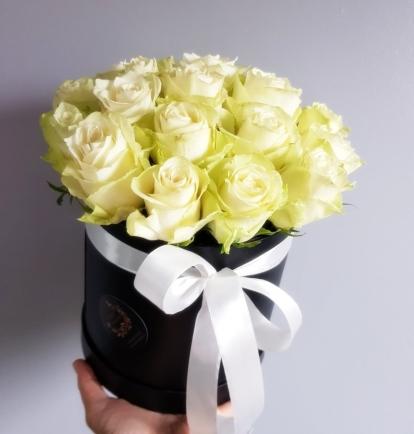 """Rožių dėžutė """"Catalina"""""""