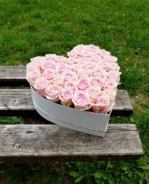 """Rožių dėžutė """"Filipina"""""""