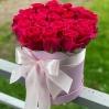 """Rožių dėžutė """"Gracia"""" 0"""