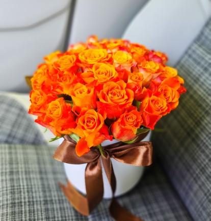 "Rožių dėžutė ""Solomėja"""