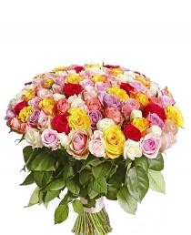 "Rožių MIX ""Barbora""  (101vnt)"