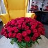 """Rožių puokštė """"Dream"""" 0"""