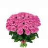 Ružavos rožės (51vnt) 75€/99€ 1