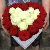 Širdelė rožių (raudonų - baltų) 0