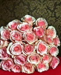 Švelniai ružavos rožės